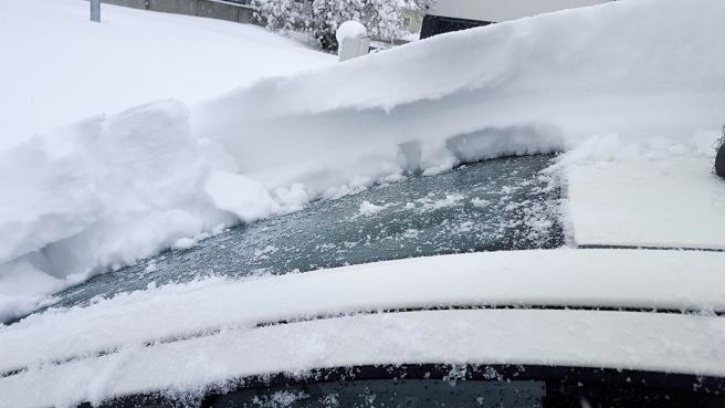 Det snöade i nästan två dygn och kom bortåt 20-30 centimeter. Snön är blöt så den har packats en hel del.