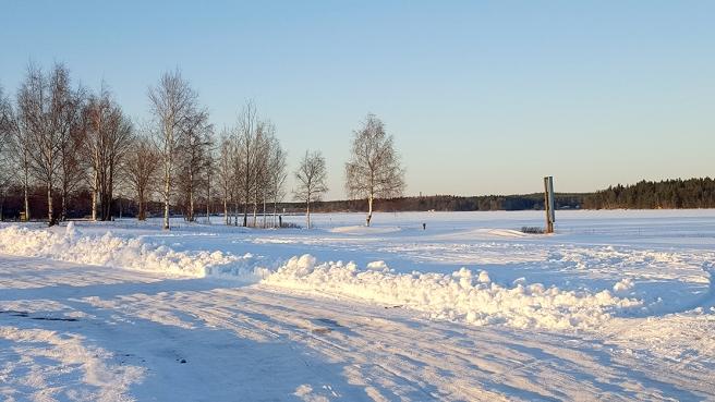Bakom träddungen och till höger på bilden ligger Lovisaviken, nu under is.