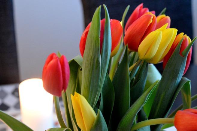 Tulpaner kan man inte få nog av under våren.
