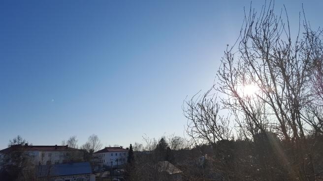Om det regnar småspik eller kommer snö i morgon ska jag återgå till den här bilden för att förstå att vi faktiskt hade vårvärme i dag.