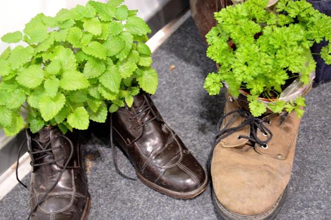 ... eller varför inte sätta kryddor eller små blommor i ett par avlagda skor?