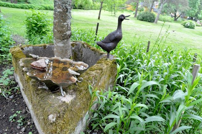 En brunn från tiden då växthusen fanns I dag trivs där ett träd. Fin mossa och fina prydnader.