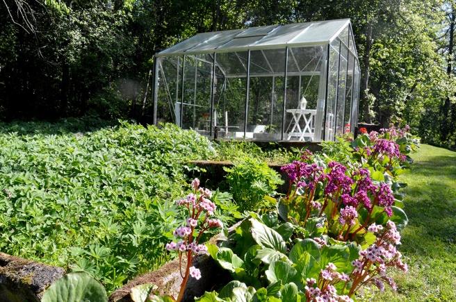 I stället för de stora växthusen finns här nu ett litet lusthus där gårdens ägare odlar lite smått och även har tid att njuta.