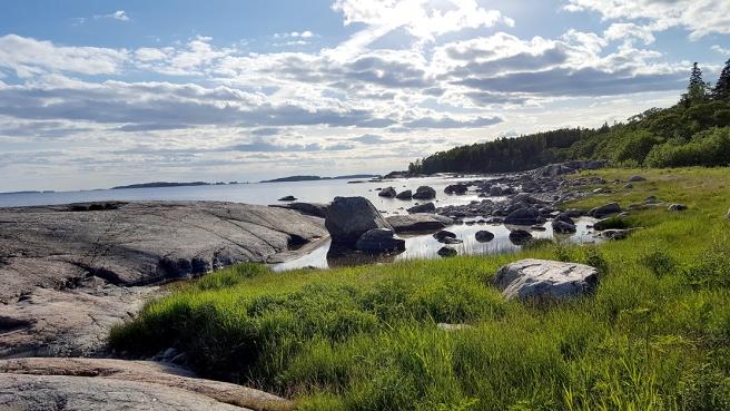 Klippor och strandstenar i motljus måndagskvällen den 6 juni på Fagerö i Sibbo.