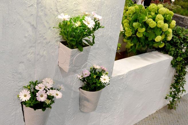 Har man en vitkalkad vägg eller mur så blir det ju nästan som i Grekland med några fina planteringar så här.