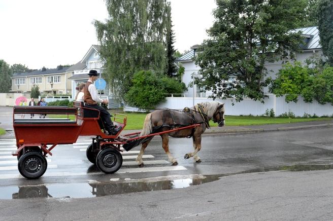 Under rosornas helg kunde man åka med häst och kärra.