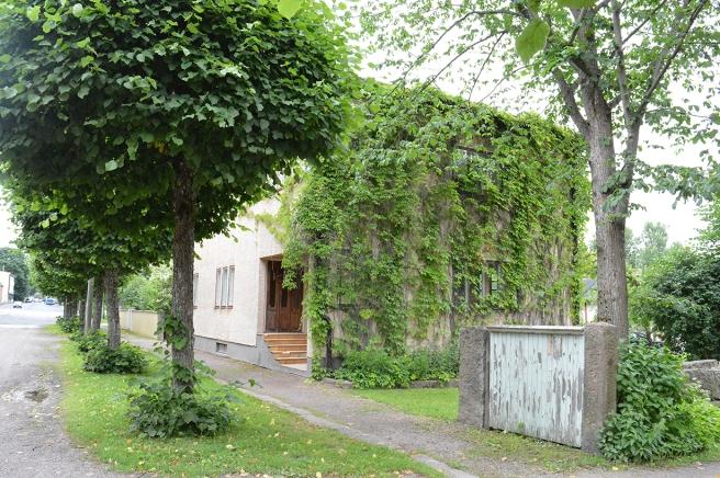 En grönskande vy från Degerbygatan i fina Lovisa.