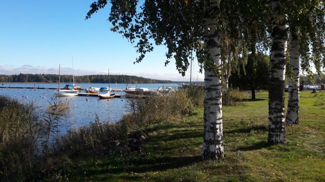 Knappt någon vind att tala om. Här syns en del av gästbåtshamnen och bryggan för allmogebåtar. Längst borta till höger paketjakten Österstjernan.