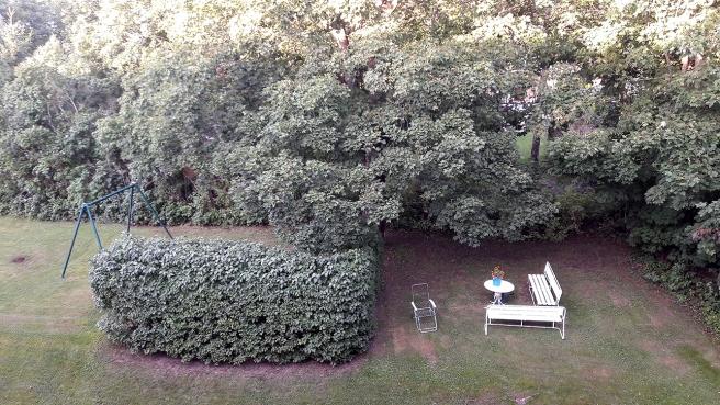 Än är naturen rätt grön men snart blir det väl färgsprakande värre här! Utsikt från min balkong.