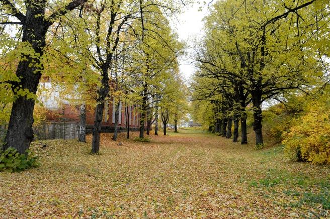 Vacker park.