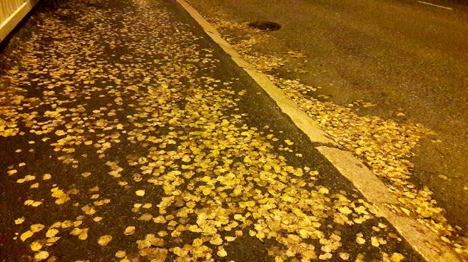31 oktober såg det ut såhär på marken då jag gick hem en kväll.