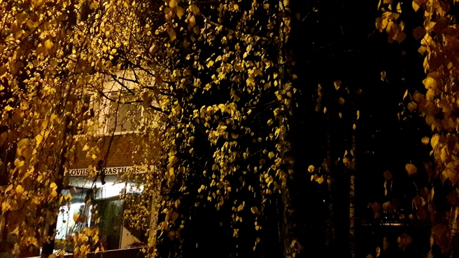Lovisa Gasthaus draperat bakom björklöven. Bilden är faktiskt tagen med mobiltelefon.