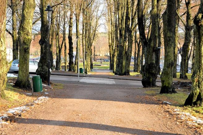 Ankarparken heter den där jag står, Polisparken lär den andra heta.