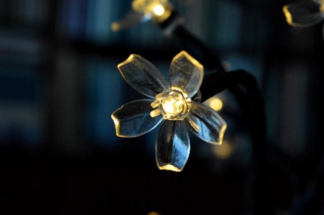 Lysande blomma hos vännen Inga i Sverige.